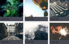 Grid CSS Image Gallery With Captions