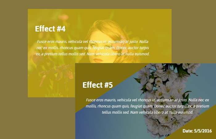 HTML/CSS Image Hover Effects