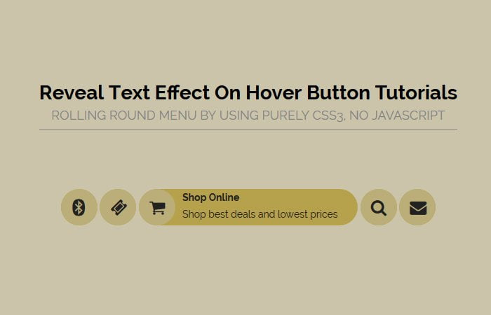Reveal Effect: Show Text on Hover Button or Icon