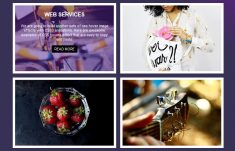 Amazing Image Overlay Hover Effects with CSS3 Transitions