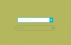 CSS Search Box With Icon Inside