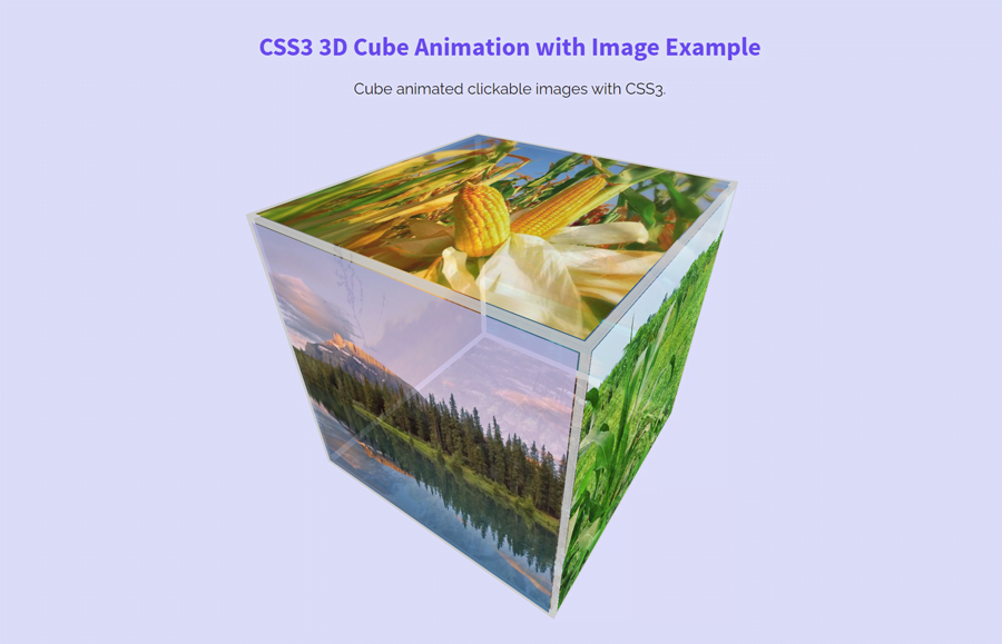 CSS3 3D Cube Animation with Image